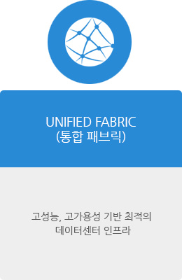 UNIFIED FABRIC(통합 패브릭)