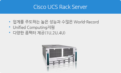 Cisco UCS Rack Server